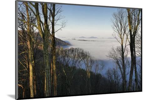 Early Morning Light and Clouds in the Valleys Make Mountains Look Like Islands-Amy, Al White, Petteway-Mounted Photographic Print