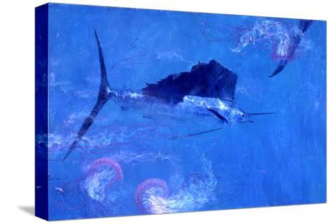 Sailfish and Jellyfish-Stanley Meltzoff-Stretched Canvas Print