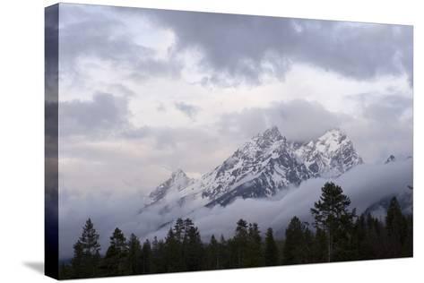 The Teton Range in Grand Teton National Park-Phil Schermeister-Stretched Canvas Print