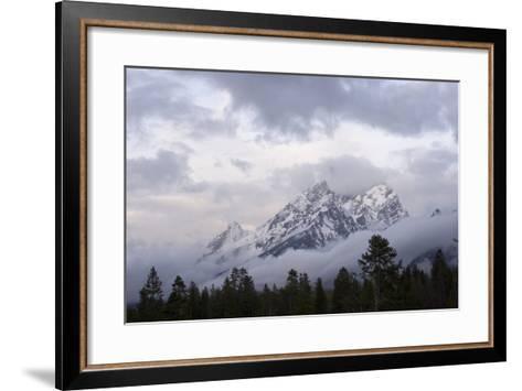 The Teton Range in Grand Teton National Park-Phil Schermeister-Framed Art Print