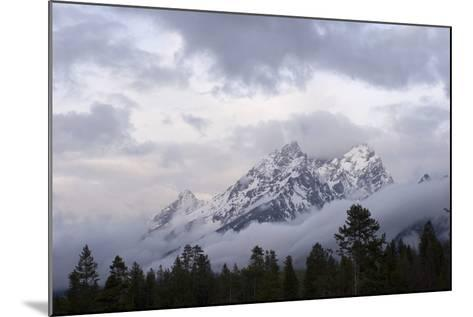 The Teton Range in Grand Teton National Park-Phil Schermeister-Mounted Photographic Print