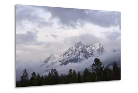 The Teton Range in Grand Teton National Park-Phil Schermeister-Metal Print
