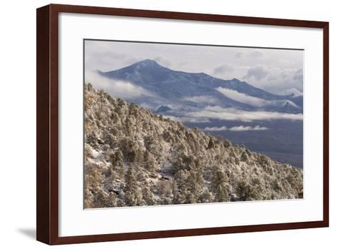 Newly Fallen Snow Along Wheeler Peak Scenic Drive in Great Basin National Park-Phil Schermeister-Framed Art Print