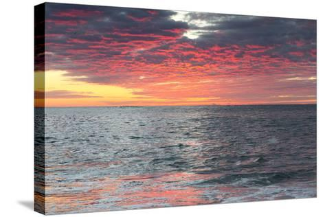Clouds and Water Reflect Vivid Pinks from Early Morning Light-Robbie George-Stretched Canvas Print