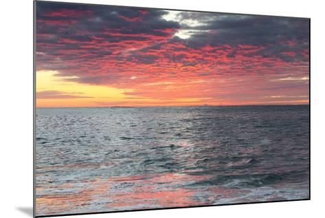 Clouds and Water Reflect Vivid Pinks from Early Morning Light-Robbie George-Mounted Photographic Print