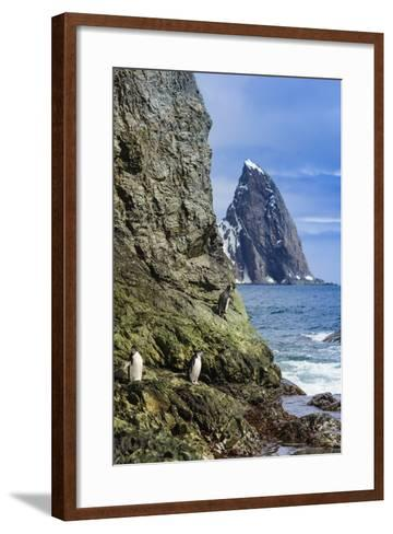 A Scenic View of Cape Valentine on Elephant Island, Antarctica-Ralph Lee Hopkins-Framed Art Print