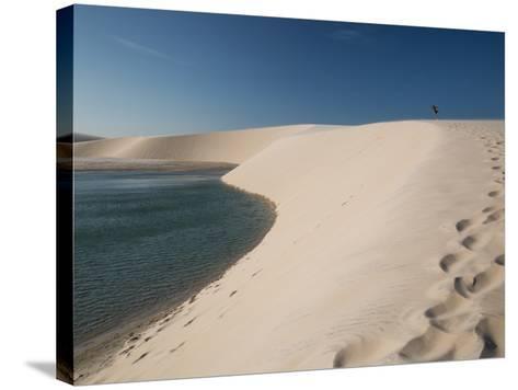 A Sand Dune Near Jericoacoara, Brazil-Alex Saberi-Stretched Canvas Print