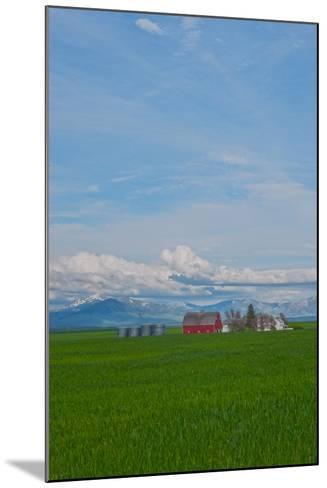 A Family Farm Sits Amid Wheat Fields Near Great Falls, Montana-Gordon Wiltsie-Mounted Photographic Print