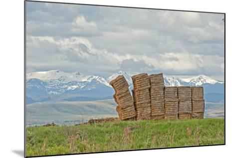 A Haystack Teeters in a Field in Montana's Gallatin Valley, Near Bozeman-Gordon Wiltsie-Mounted Photographic Print