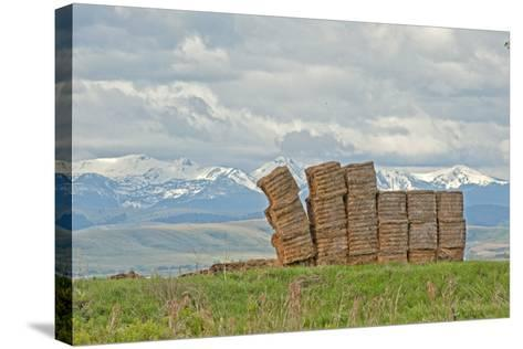 A Haystack Teeters in a Field in Montana's Gallatin Valley, Near Bozeman-Gordon Wiltsie-Stretched Canvas Print