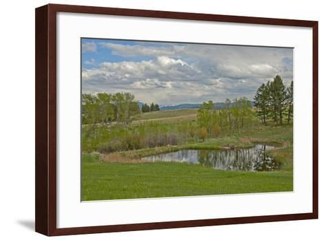 Trees Reflected in a Pond in Spring-Gordon Wiltsie-Framed Art Print