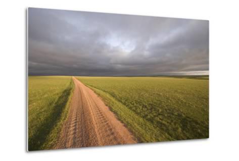 A Road Through Oglala National Grassland in Nebraska-Phil Schermeister-Metal Print