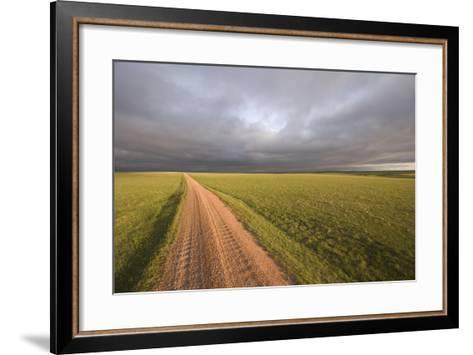 A Road Through Oglala National Grassland in Nebraska-Phil Schermeister-Framed Art Print