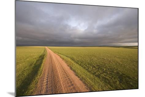 A Road Through Oglala National Grassland in Nebraska-Phil Schermeister-Mounted Photographic Print