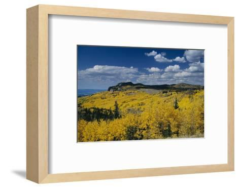 Fall Colors Along the Brazos Cliffs-Macduff Everton-Framed Art Print