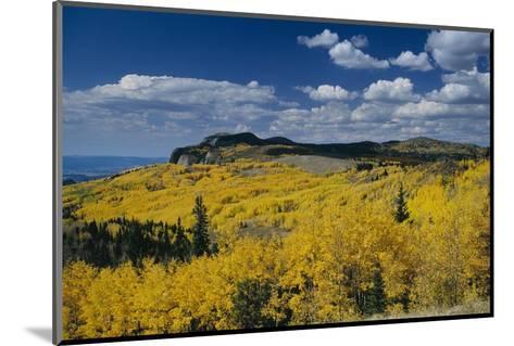 Fall Colors Along the Brazos Cliffs-Macduff Everton-Mounted Photographic Print
