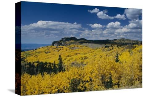 Fall Colors Along the Brazos Cliffs-Macduff Everton-Stretched Canvas Print