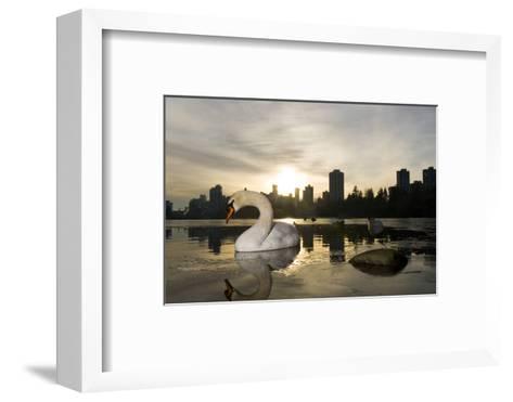 A Mute Swan, Cygnus Olor, in Lost Lagoon in Stanley Park-Paul Colangelo-Framed Art Print