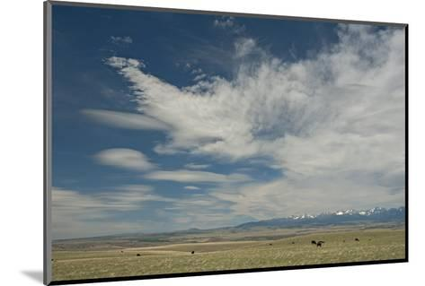 Cirrus and Lenticular Clouds over Prairies Surrounding the Crazy Mountains, Near Livingston-Gordon Wiltsie-Mounted Photographic Print