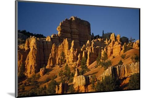 Exposed Orange Red Limestone in Dixie National Forest Near Bryce Canyon-Macduff Everton-Mounted Photographic Print