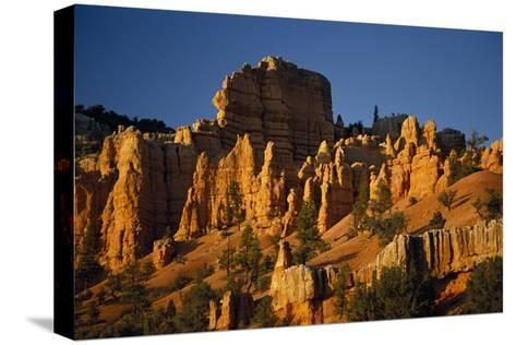 Exposed Orange Red Limestone in Dixie National Forest Near Bryce Canyon-Macduff Everton-Stretched Canvas Print