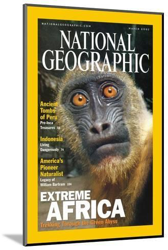 Cover of the March, 2001 National Geographic Magazine-Michael Nichols-Mounted Photographic Print