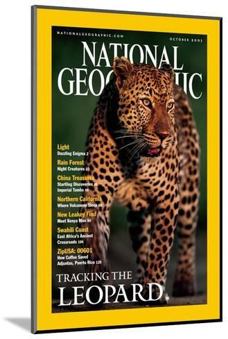 Cover of the October, 2001 National Geographic Magazine-Kim Wolhuter-Mounted Photographic Print