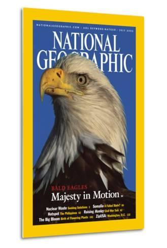 Cover of the July, 2002 National Geographic Magazine-Norbert Rosing-Metal Print