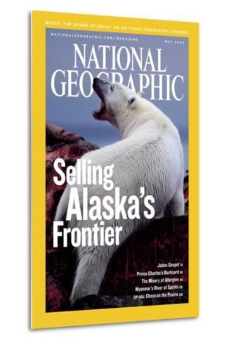 Cover of the May, 2006 National Geographic Magazine-Joel Sartore-Metal Print