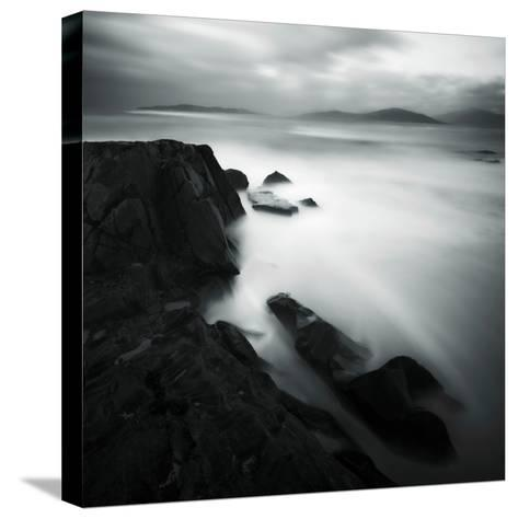 Podzoom-David Baker-Stretched Canvas Print