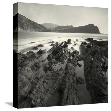 Jabberfire-David Baker-Stretched Canvas Print