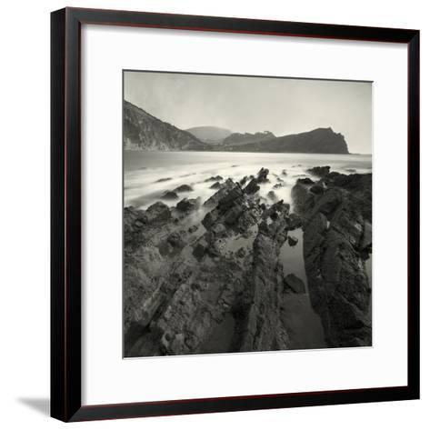 Jabberfire-David Baker-Framed Art Print