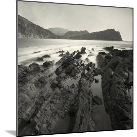 Jabberfire-David Baker-Mounted Photographic Print