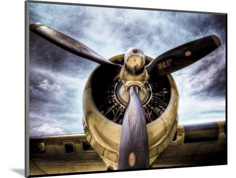 1945: Single Engine Plane-Stephen Arens-Mounted Photographic Print
