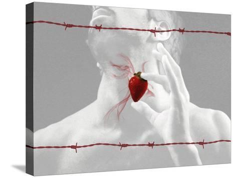 Truzz-Fabio Panichi-Stretched Canvas Print