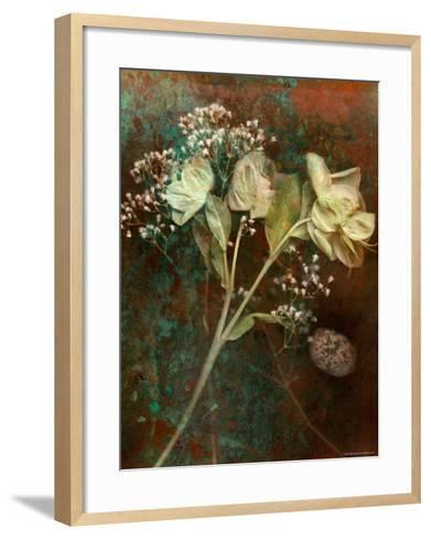 Wilted White Rose and Baby's Breath-Robert Cattan-Framed Art Print