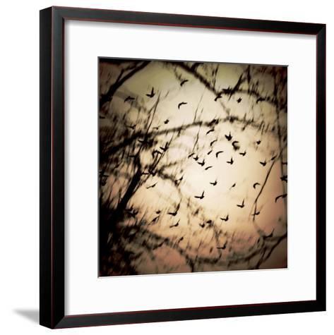Birds Flying from Tree-Ewa Zauscinska-Framed Art Print