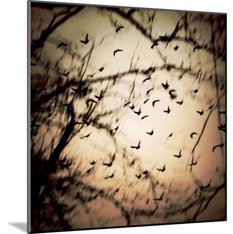 Birds Flying from Tree-Ewa Zauscinska-Mounted Photographic Print