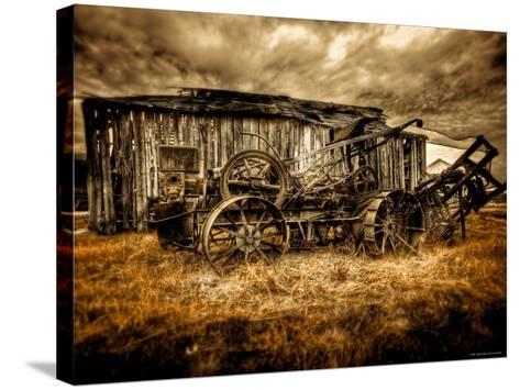 Expired-Stephen Arens-Stretched Canvas Print