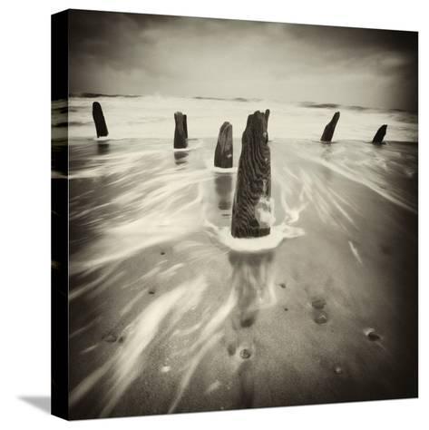 Brainclub-David Baker-Stretched Canvas Print