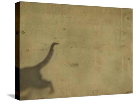 Blurred Back Half of Cat-Mia Friedrich-Stretched Canvas Print