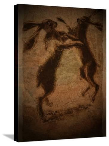 Hare Boxing-Tim Kahane-Stretched Canvas Print