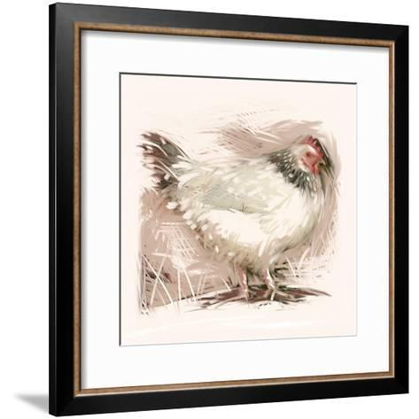 Light Sussex Hen-Tim Kahane-Framed Art Print