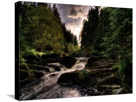 Waterfall, River Severn, Hafren Forest, Wales-Clive Nolan-Stretched Canvas Print
