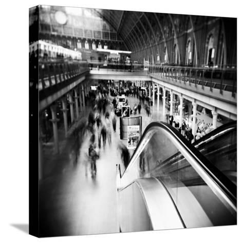 Archalizer-Craig Roberts-Stretched Canvas Print