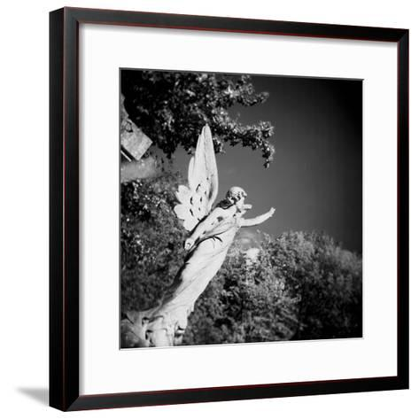 Whitescape-Craig Roberts-Framed Art Print