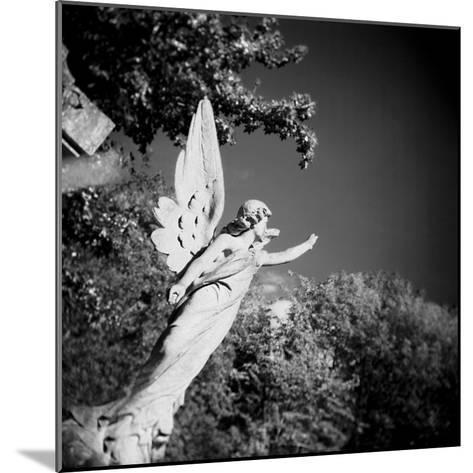 Whitescape-Craig Roberts-Mounted Photographic Print