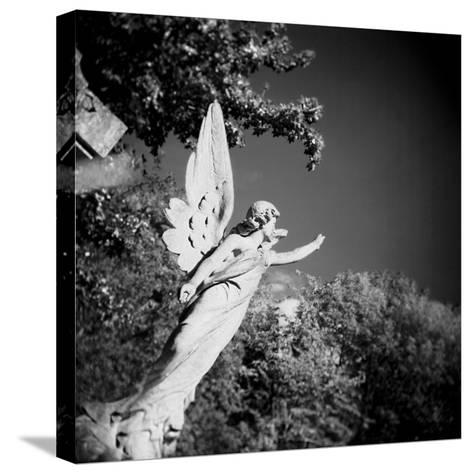 Whitescape-Craig Roberts-Stretched Canvas Print