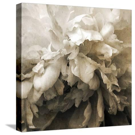Forget-Katherine Sanderson-Stretched Canvas Print