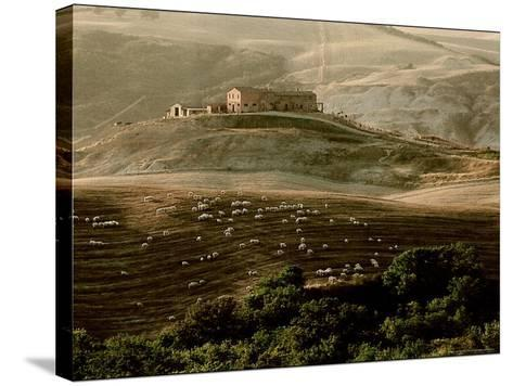Late Afternoon in Tuscany-Monika Brand-Stretched Canvas Print